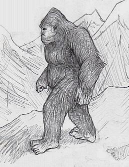 desen de Lizard King sursa Wikipedia