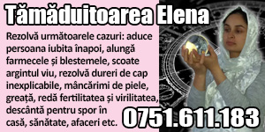 Banner 300x150 Elena 8