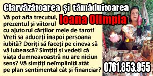 Banner 300x150 Tamaduitoarea Ioana Olimpia