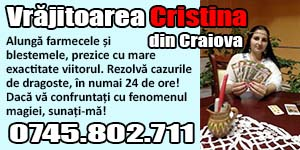 cristina craiova banner mic nou