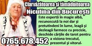 Banner 300x150 Clarvazatoarea Niculina din Bucuresti